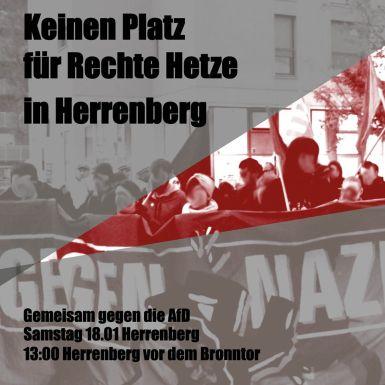 2020-01-18 Herrenberg Klosterhof